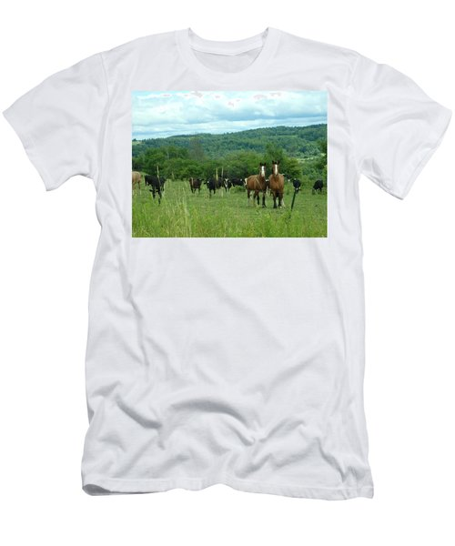 Horse And Cow Men's T-Shirt (Athletic Fit)