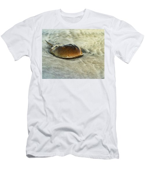 Horseshoe Crab On The Beach Men's T-Shirt (Athletic Fit)