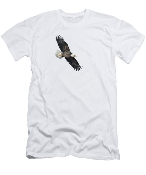 Isolated Bald Eagle 2018-2 Men's T-Shirt (Athletic Fit)