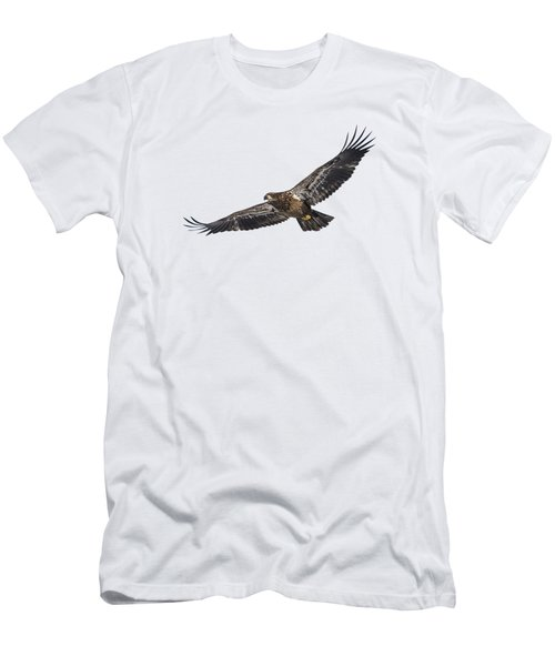 Isolated Bald Eagle 2018-3 Men's T-Shirt (Athletic Fit)