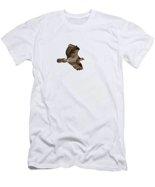 Isolated Osprey 2019-1 Men's T-Shirt (Athletic Fit)