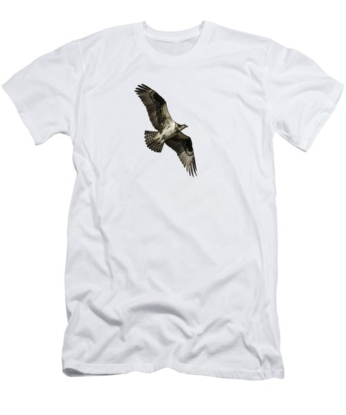 Isolated Osprey 2019-2 Men's T-Shirt (Athletic Fit)