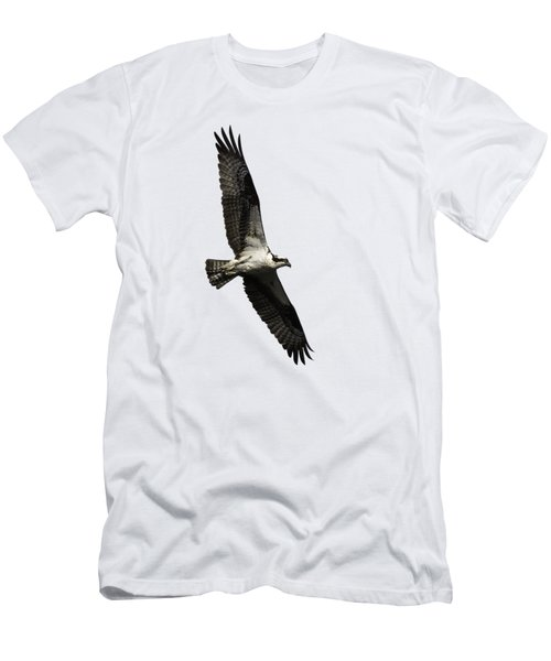 Isolated Osprey 2019-3 Men's T-Shirt (Athletic Fit)