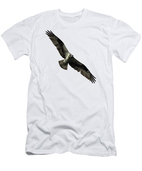 Isolated Osprey 2019-4 Men's T-Shirt (Athletic Fit)