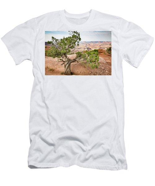 Juniper Over The Canyon Men's T-Shirt (Athletic Fit)