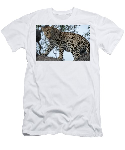 Leopard Anticipation Men's T-Shirt (Athletic Fit)