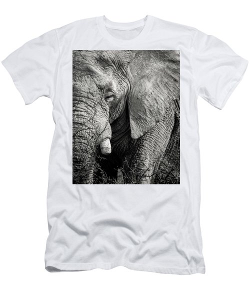Look Of An Elephant Men's T-Shirt (Athletic Fit)