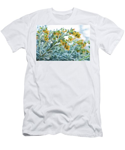 Mexican Echeveria In The  Morning Men's T-Shirt (Athletic Fit)