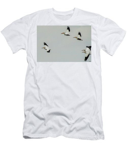 Pelicans In Flight Men's T-Shirt (Athletic Fit)