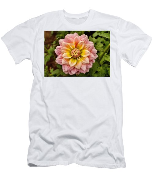 Pink And Yellow Men's T-Shirt (Athletic Fit)