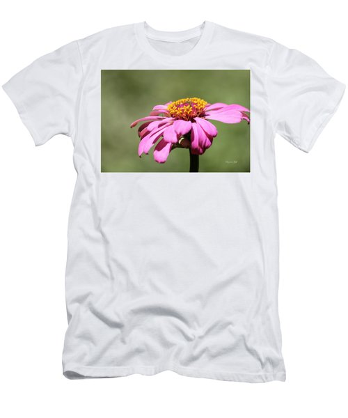 Pink Coneflower In Pastel Men's T-Shirt (Athletic Fit)