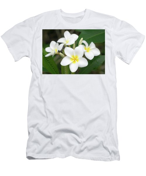 Pleasing Plumeria Men's T-Shirt (Athletic Fit)