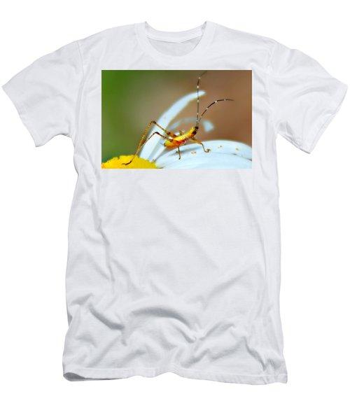 Pollen Tracks Men's T-Shirt (Athletic Fit)