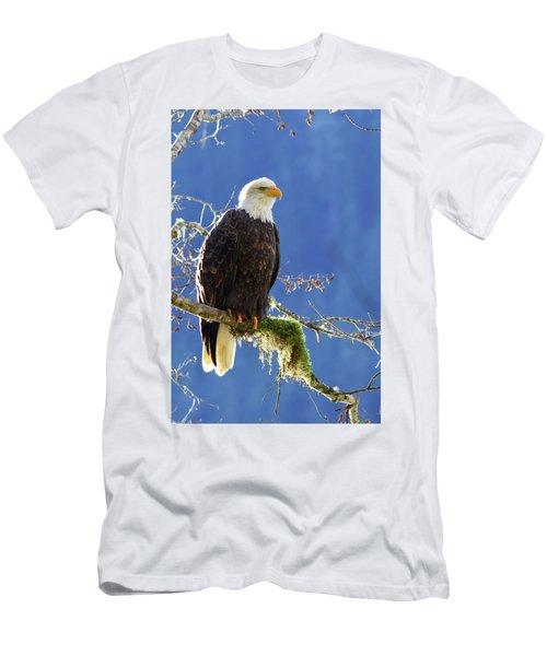 Portrait Of A Backlit Bald Eagle In Squamish Men's T-Shirt (Athletic Fit)