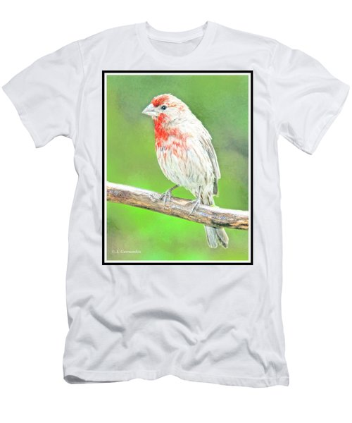Purple Finch, Animal Portrait Men's T-Shirt (Athletic Fit)