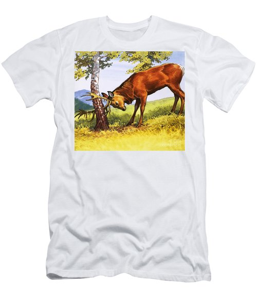 Red Deer Cleaning Antlers Men's T-Shirt (Athletic Fit)