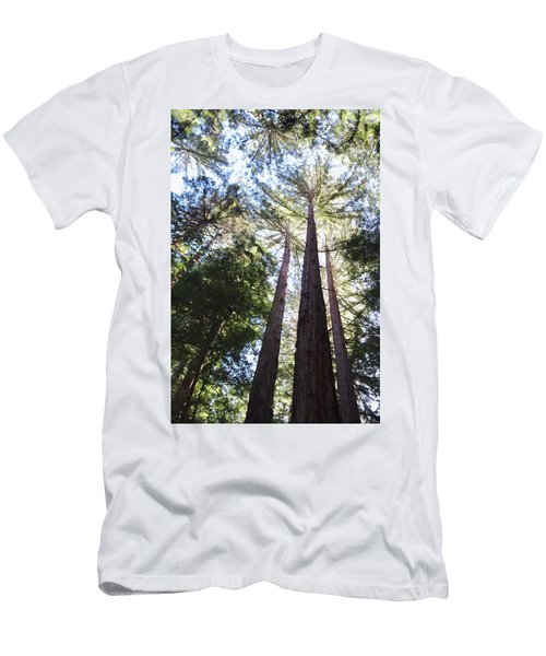 Redwoods, Blue Sky Men's T-Shirt (Athletic Fit)