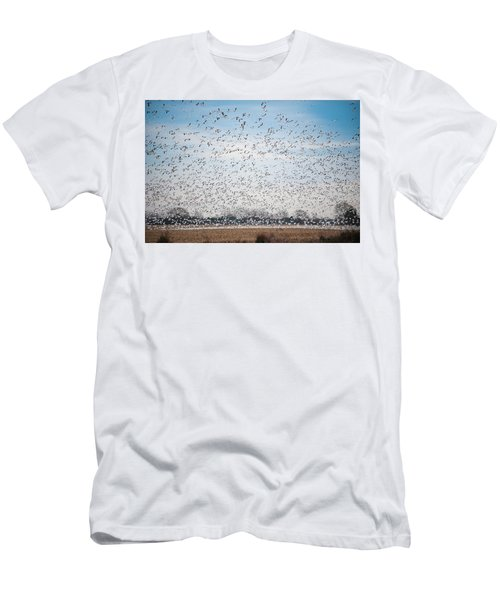 Resting On The Flyway Men's T-Shirt (Athletic Fit)