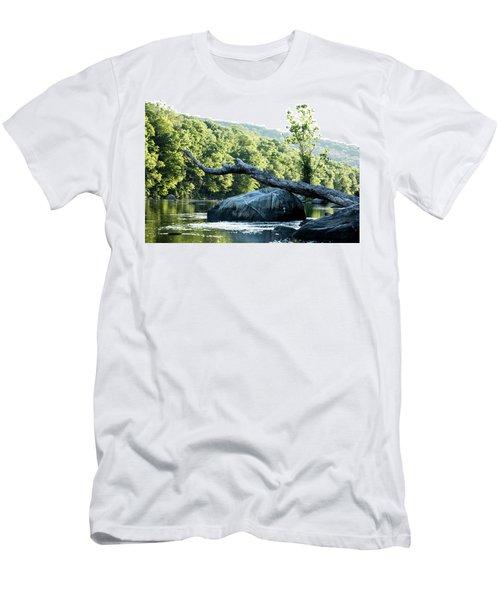 River Tree Men's T-Shirt (Athletic Fit)