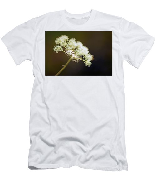 Scotland. Loch Rannoch. White Flowerhead. Men's T-Shirt (Athletic Fit)