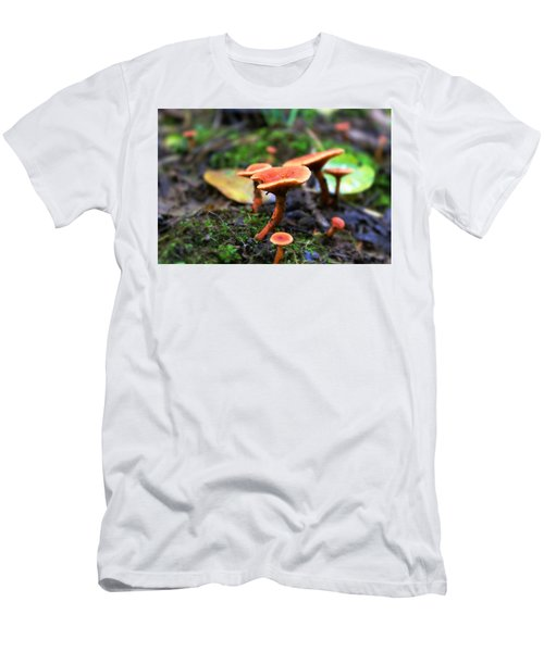 Shrooms Men's T-Shirt (Athletic Fit)