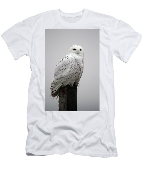 Snowy Owl In Fog Men's T-Shirt (Athletic Fit)