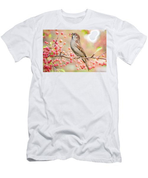 Sparrow Eating Berries Men's T-Shirt (Athletic Fit)