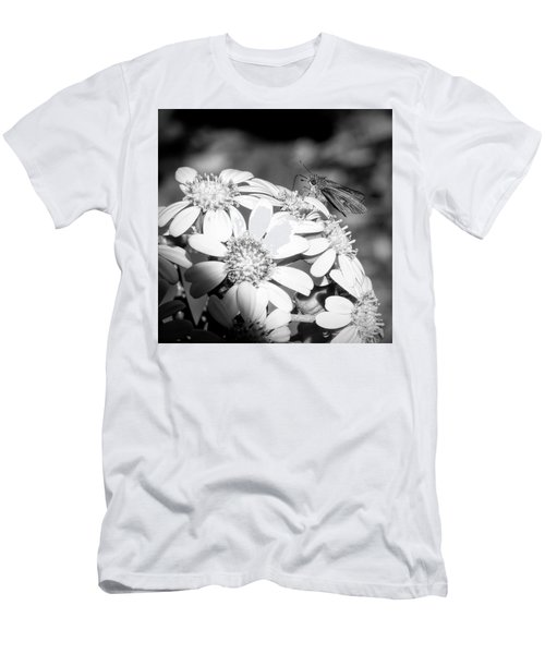 Spotlight To Pollinate Men's T-Shirt (Athletic Fit)
