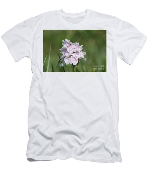 Spotted Heath Orchid Men's T-Shirt (Athletic Fit)