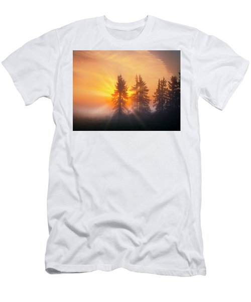 Spruce Trees In The Morning Men's T-Shirt (Athletic Fit)