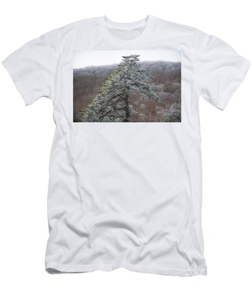 Tree With Hoarfrost Men's T-Shirt (Athletic Fit)