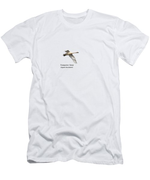 Trumpeter Swan Isolated 2018-2 Men's T-Shirt (Athletic Fit)