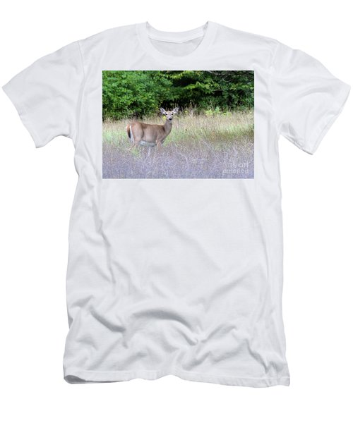 White Tale Deer Men's T-Shirt (Athletic Fit)