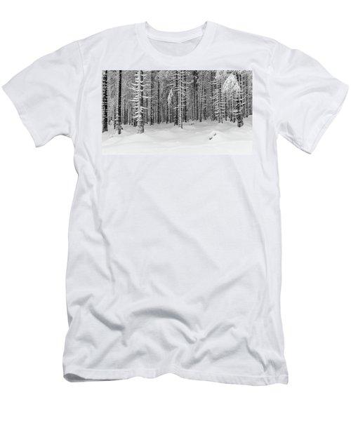 winter forest, Harz Men's T-Shirt (Athletic Fit)