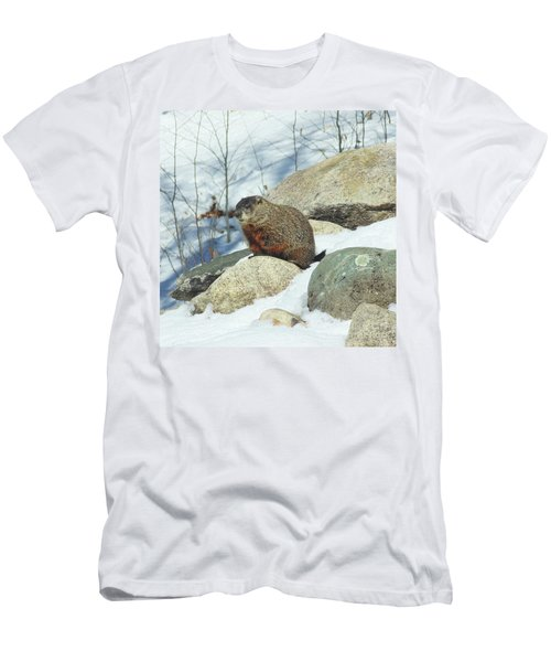 Winter Groundhog Men's T-Shirt (Athletic Fit)