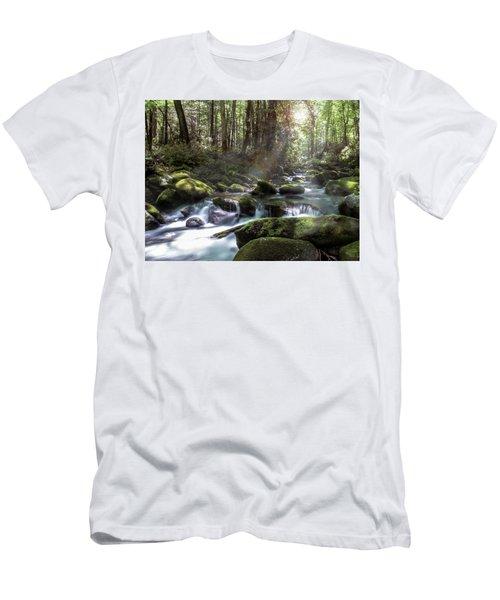 Woodland Falls Men's T-Shirt (Athletic Fit)