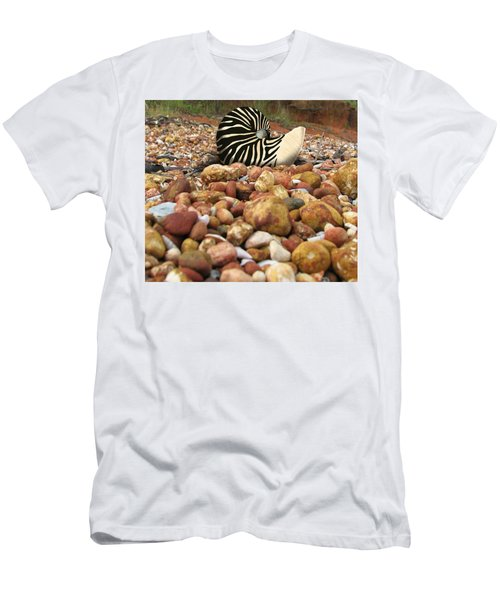 Zebra Nautilus Shell On Bauxite Beach Men's T-Shirt (Athletic Fit)
