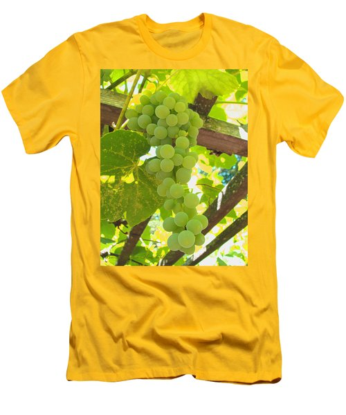 Fruit Of The Vine - Garden Art For The Kitchen Men's T-Shirt (Athletic Fit)