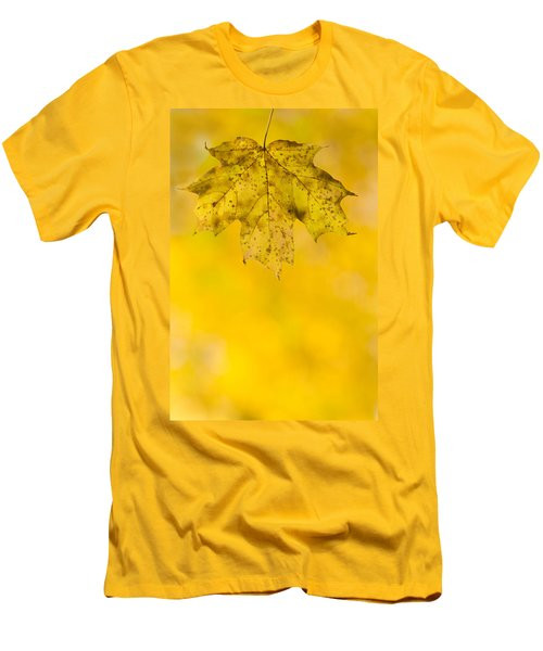 Men's T-Shirt (Slim Fit) featuring the photograph Golden Autumn by Sebastian Musial