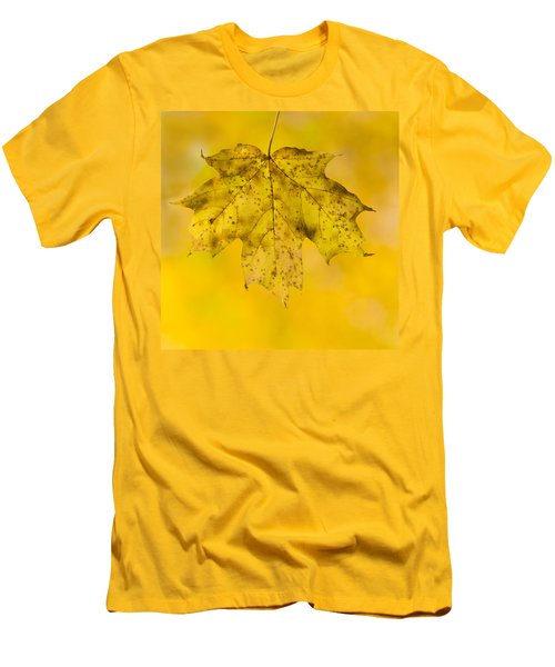 Men's T-Shirt (Slim Fit) featuring the photograph Golden Maple Leaf by Sebastian Musial