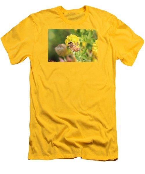 Honeybee On Hop Clover Men's T-Shirt (Slim Fit) by Lucinda VanVleck
