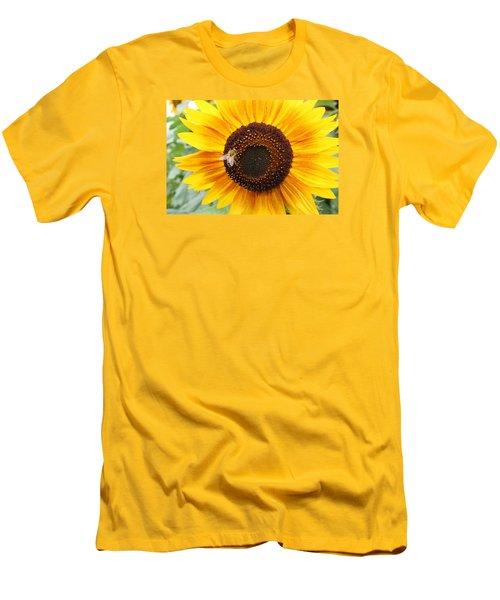 Honeybee On Small Sunflower Men's T-Shirt (Slim Fit) by Lucinda VanVleck