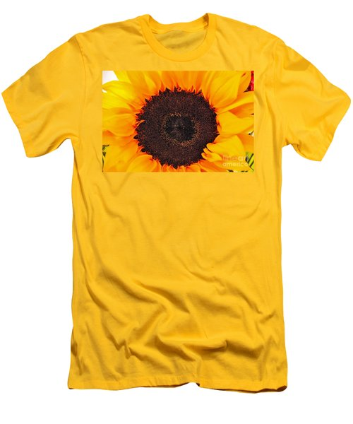 Sun Delight Men's T-Shirt (Slim Fit) by Angela J Wright