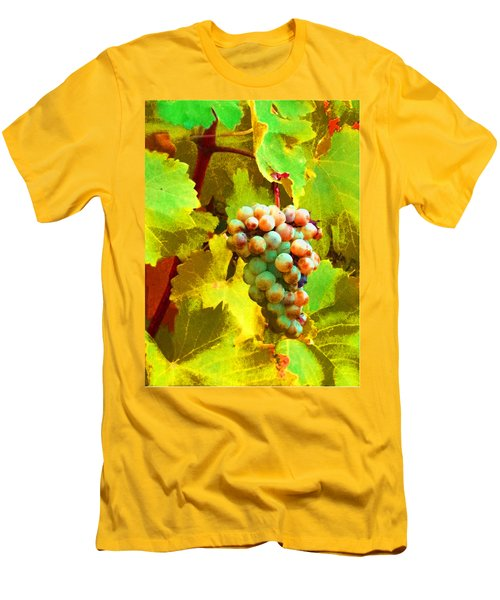 Paschke Grapes Men's T-Shirt (Athletic Fit)