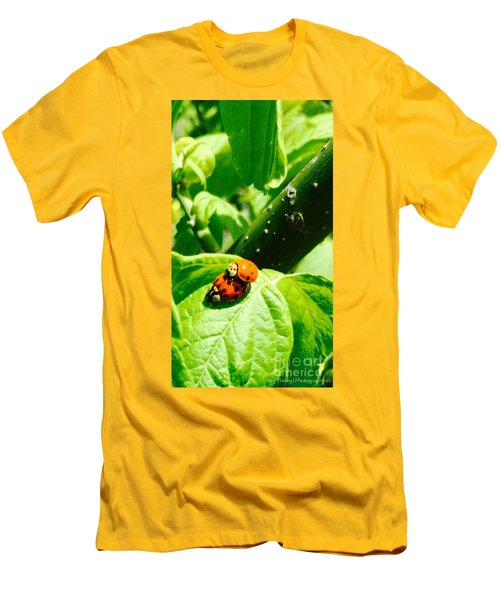 Men's T-Shirt (Slim Fit) featuring the photograph  Ladybugs In Love - No. 2016 by Joe Finney