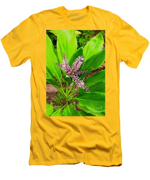 Flowering Ti Plant Men's T-Shirt (Athletic Fit)