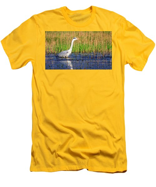 Grey Heron, Ardea Cinerea, In A Pond Men's T-Shirt (Athletic Fit)