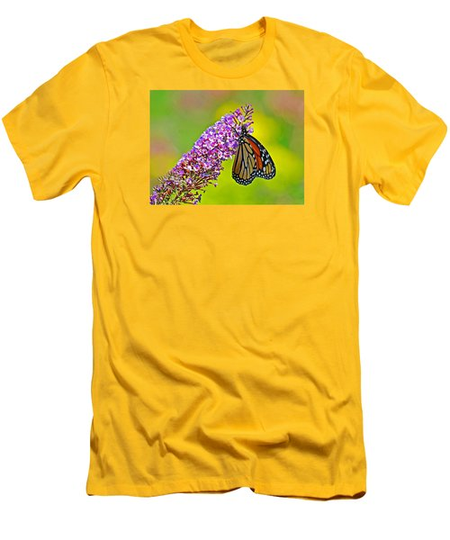 Monarch Butterfly Men's T-Shirt (Slim Fit) by Rodney Campbell