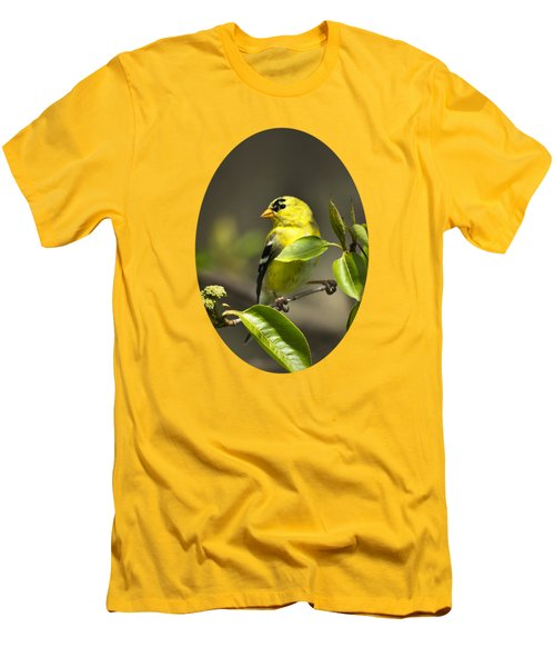 American Goldfinch On Branch Men's T-Shirt (Slim Fit) by Christina Rollo