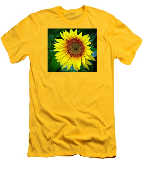 Brighten Your Day Men's T-Shirt (Slim Fit) by Karen McKenzie McAdoo